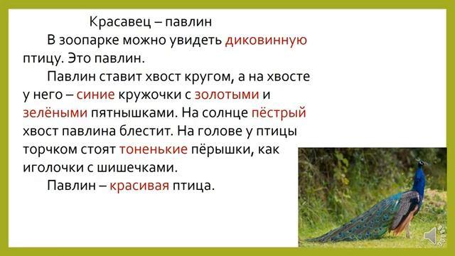 Текст описание Что такое текст-описание. Как составить текст описание.  Урок русского языка.