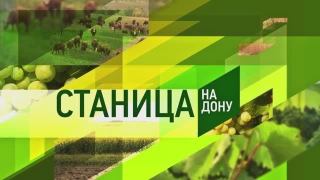 Станица-на-Дону 16.10.2021