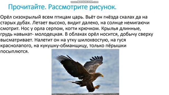 Повторение пройденного материала за 1четверть. Русский язык 2 класс. Часть 1