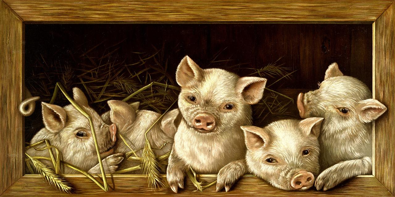 Маленькие Поросята - Про деревенскую жизнь, Семья Комиссаровых