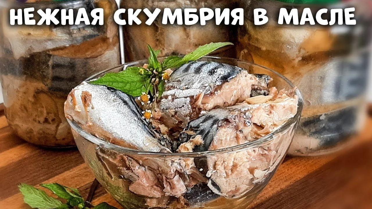 Светлана Глебова_Сочная и нежная скумбрия в масле