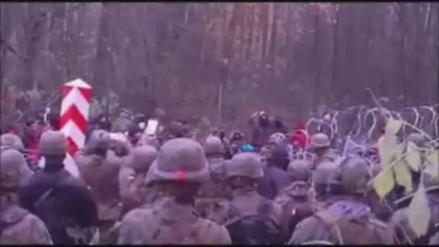 Нелегальные мигранты снова штурмовали белорусско-польскую границу